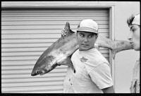 http://ed-templeton.com/files/gimgs/th-153_Man with thresher shark HB pier V2.jpg