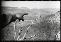 http://www.ed-templeton.com/files/gimgs/th-156_Keegan-points-Grand-Canyon.jpg