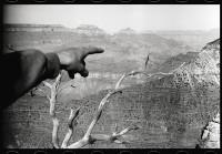 http://ed-templeton.com/files/gimgs/th-156_Keegan-points-Grand-Canyon.jpg
